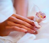женские руки с орхидеей, фото