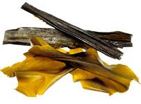 Красота требует морской капусты