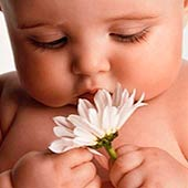 Эфирные масла для младенцев