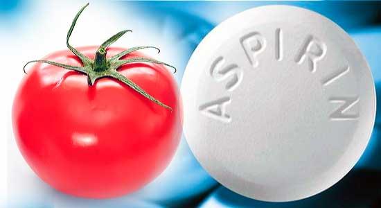 аспирин и помидор