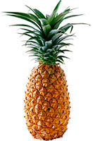 ананас, фото