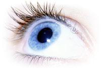 глаз, фото
