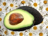 Авокадо по морщинам