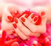женские руки в розовых лепестках