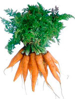 маски для кожи вокруг глаз с морковью