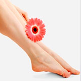 женские ноги, фото