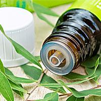 Масло чайного дерева при профилактике гриппа отзывы